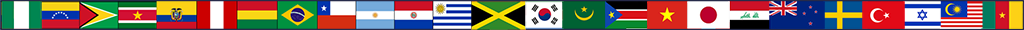 International Flag Banner