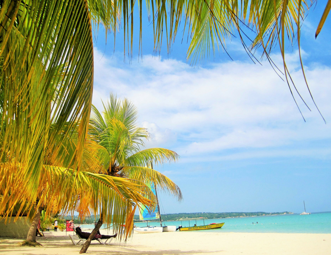Study Abroad In Jamaica