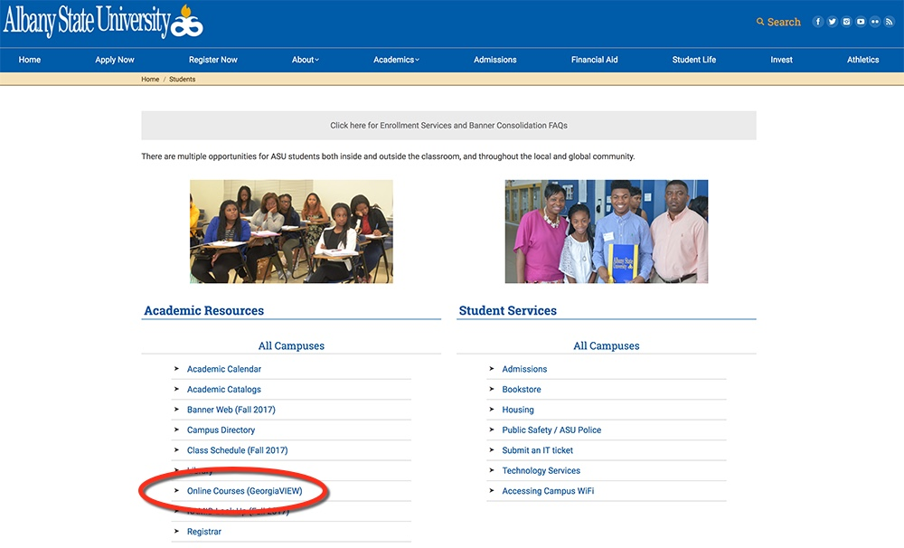 Screen shot of the Students page with the 'Online Courses (GeorgiaVIEW)' link circled