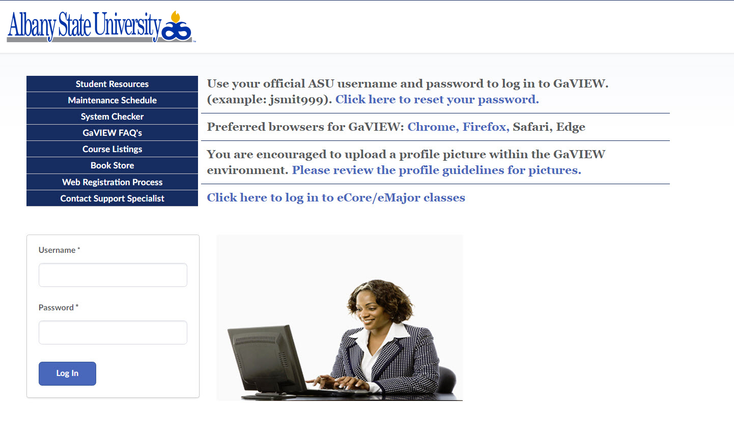 Screen Shot of the GeorgiaVIEW login page